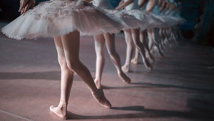 Beginner Ballet Classes